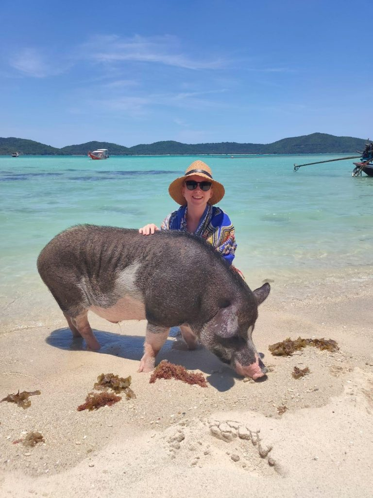 pig island Thailand