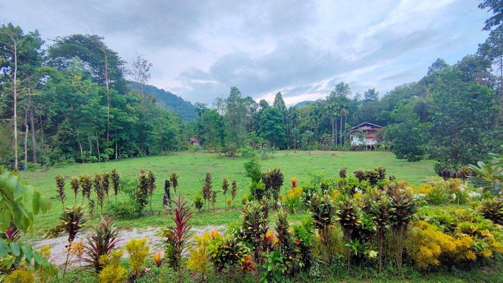 bliss khao sok garden
